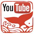 Sur Youtube