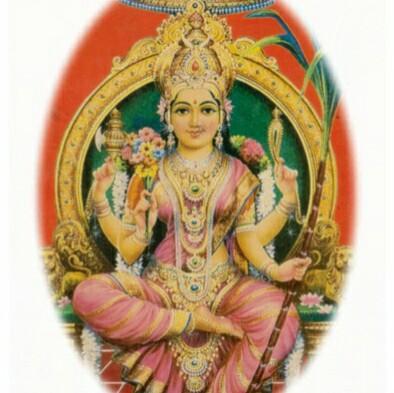 Abhi Raj