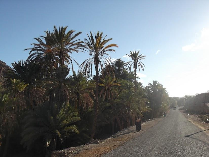 marrocos - Marrocos e Mauritãnia a Queimar Pneu e Gasolina - Página 10 DSCF1217