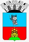Современный герб Василькова