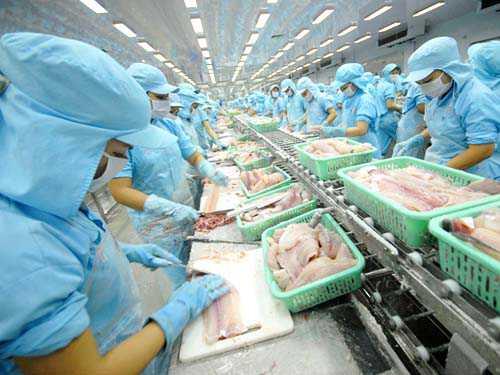 Đơn hàng chế biến thủy sản cần 17 nữ làm việc tại Oita Nhật Bản tháng 09/2017