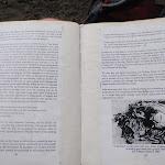 Interesting reading (144303)