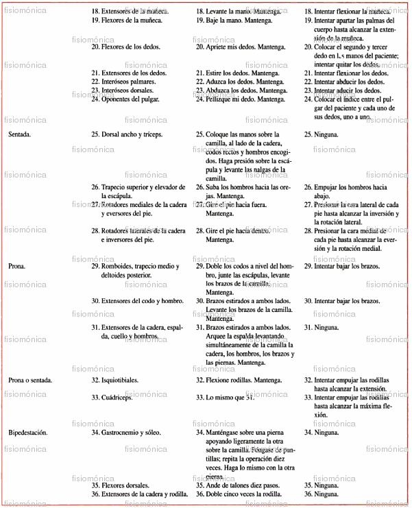 Fisiom nica diagn stico fisioterap utico screening muscular for Test fisioterapia