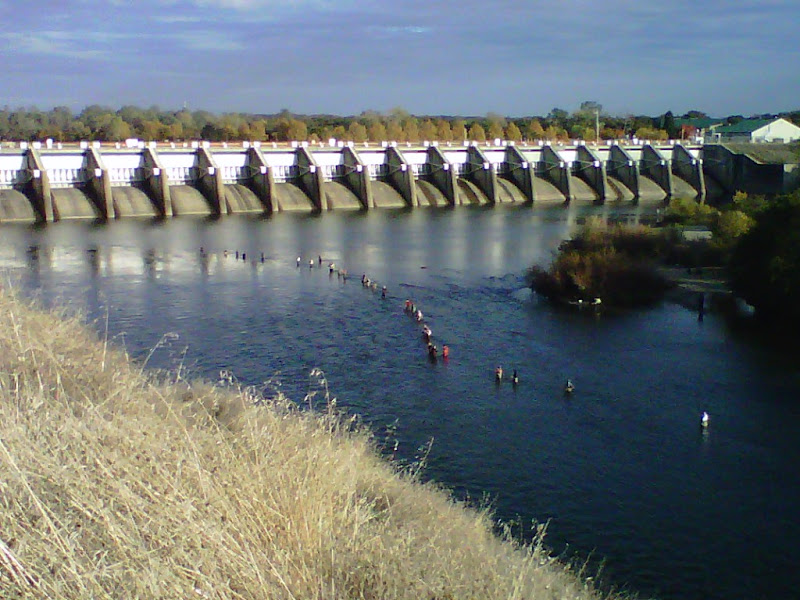'Fishing' for salmon below the Nimbus Dam