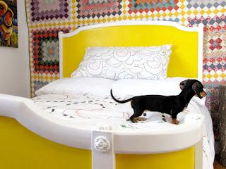 cãozinho na cama