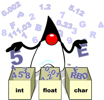 duke_int_float_char.png