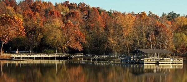 Fayetteville - Arkansas