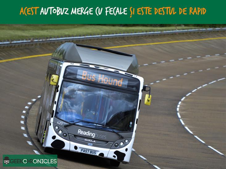 autobuz merge cu fecale