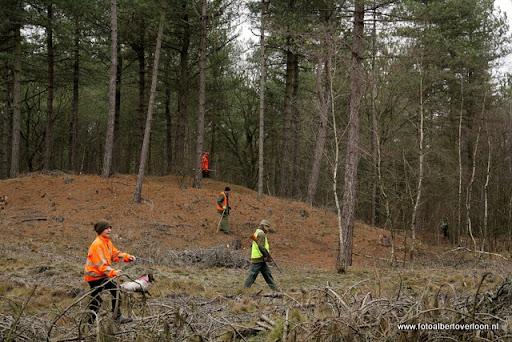 vossenjacht in de Bossen van overloon 18-02-2012 (41).JPG