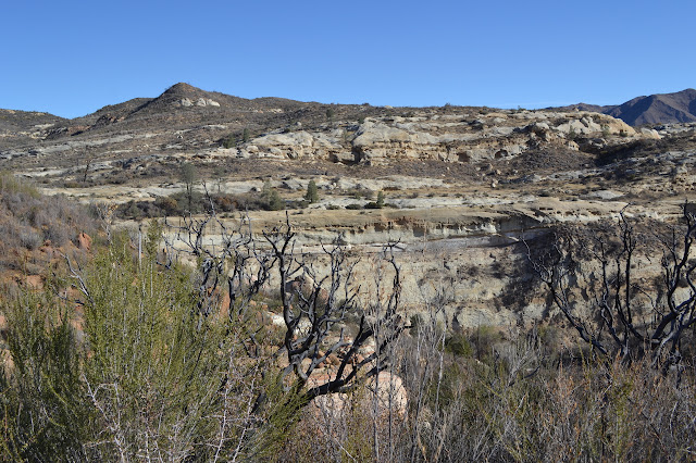 higher cliffs of White Ledge Canyon