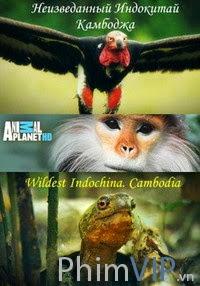 Đông Dương Hoang Dã Nhất - Wildest Indochina poster