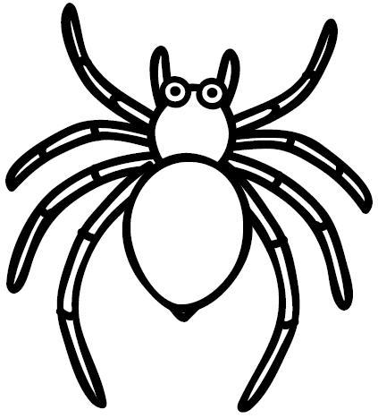 Pinto Dibujos: Araña para colorear