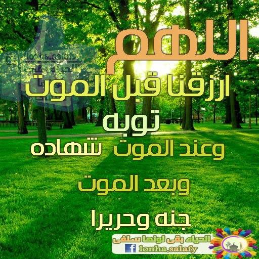 دعاء اليوم / شاركونا - صفحة 4 542025_464569466937891_1149659753_n