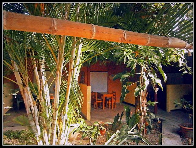 area-bambu
