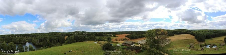 Widok z wieży na Górze Lemana w Piasznie