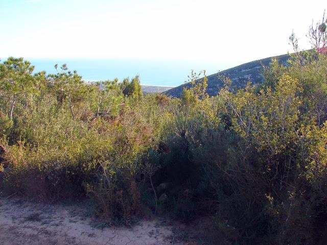 Senderismo Oropesa - Vértice - Barranc Diablo
