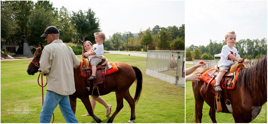 Horse rides second birthday party