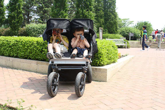 Now, it's a crisis. ISO double AT/jogging stroller for ...