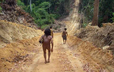 Loggers burn to death a member of the Awa indigenous nation