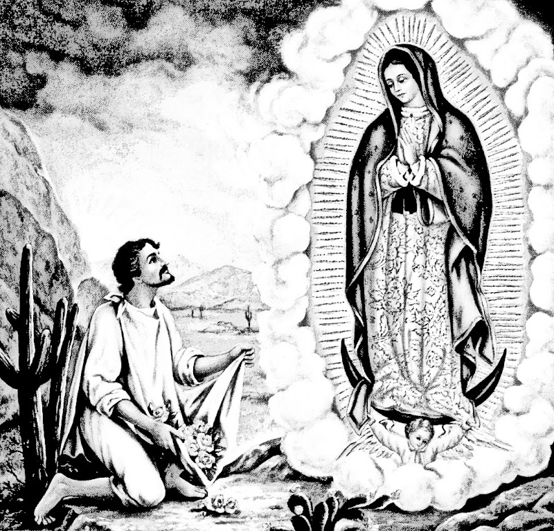 apparition of the Virgin of Guadalupe to Juan Diego Our lady of Guadalupe coloring pages
