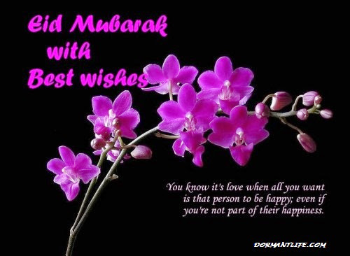 Eid Cards 2014 - Eid Ul Fitr 2014: Greeting, Cards And SMS