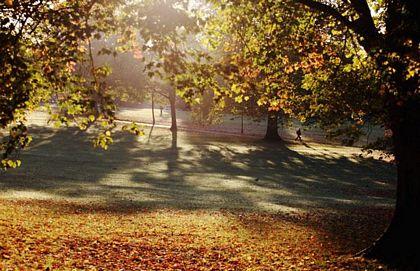 Những bài thơ tình Nắng mùa Thu hay nhất