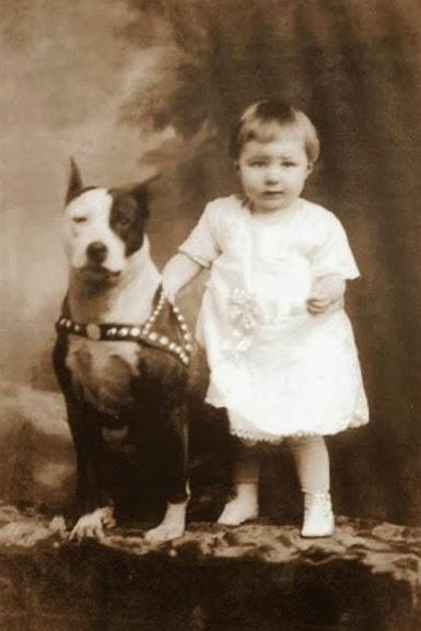 Um bebê e um Pit Bull em foto do século XIX