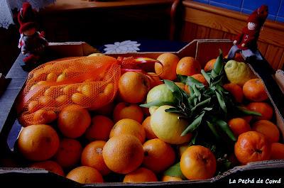 Naranjas Ché