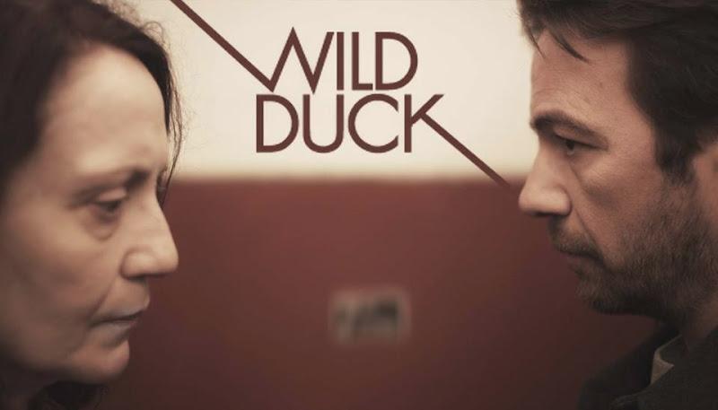 Wild Duck Wallpaper