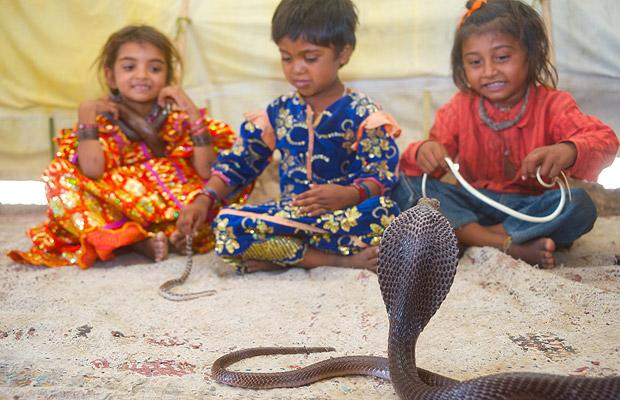 children_snake_charmers_in_india_02.jpg (620×400)