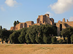 A closer view of the Palatine ruins from the Circus Maximus