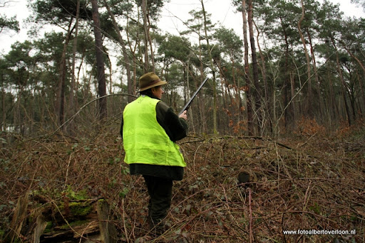 vossenjacht in de Bossen van overloon 18-02-2012 (13).JPG
