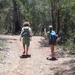 Walkers near Mowarry Point (104278)