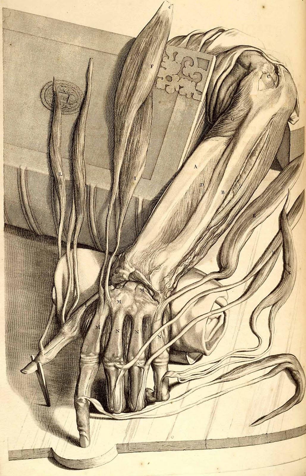 Rhetorical ectoplasm | Paper Knife