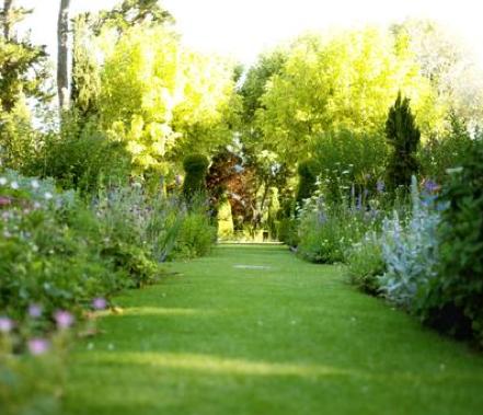 Cuidados en tu jardin agronom a para todos for Imagenes de jardines exoticos