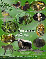 Poster on Biodiversity of Arunachal Pradesh