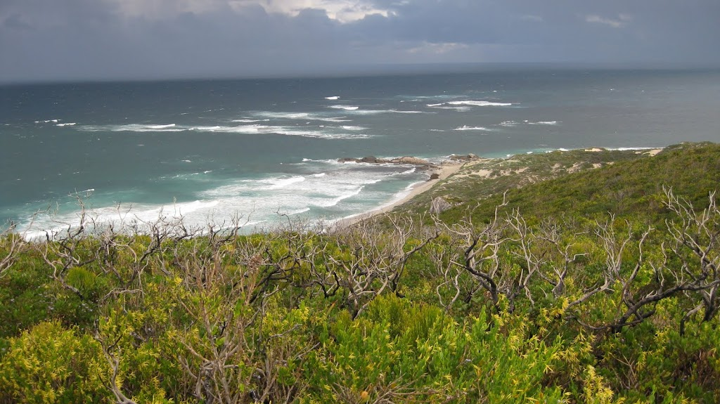 Looking north over The Ledges - Cape to Cape Track