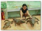 with baby crocs at crocolandia