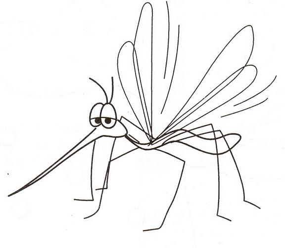 El Mosquito Del Dengue