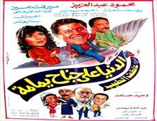 فيلم الدنيا على جناح يمامة