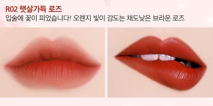 Son Black Rouge Rose Vlevet Lipstick R02