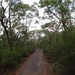 Cascades track (121237)