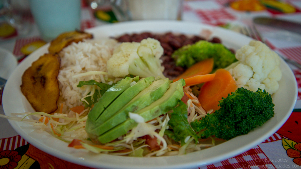A delicious Costa Rican lunch