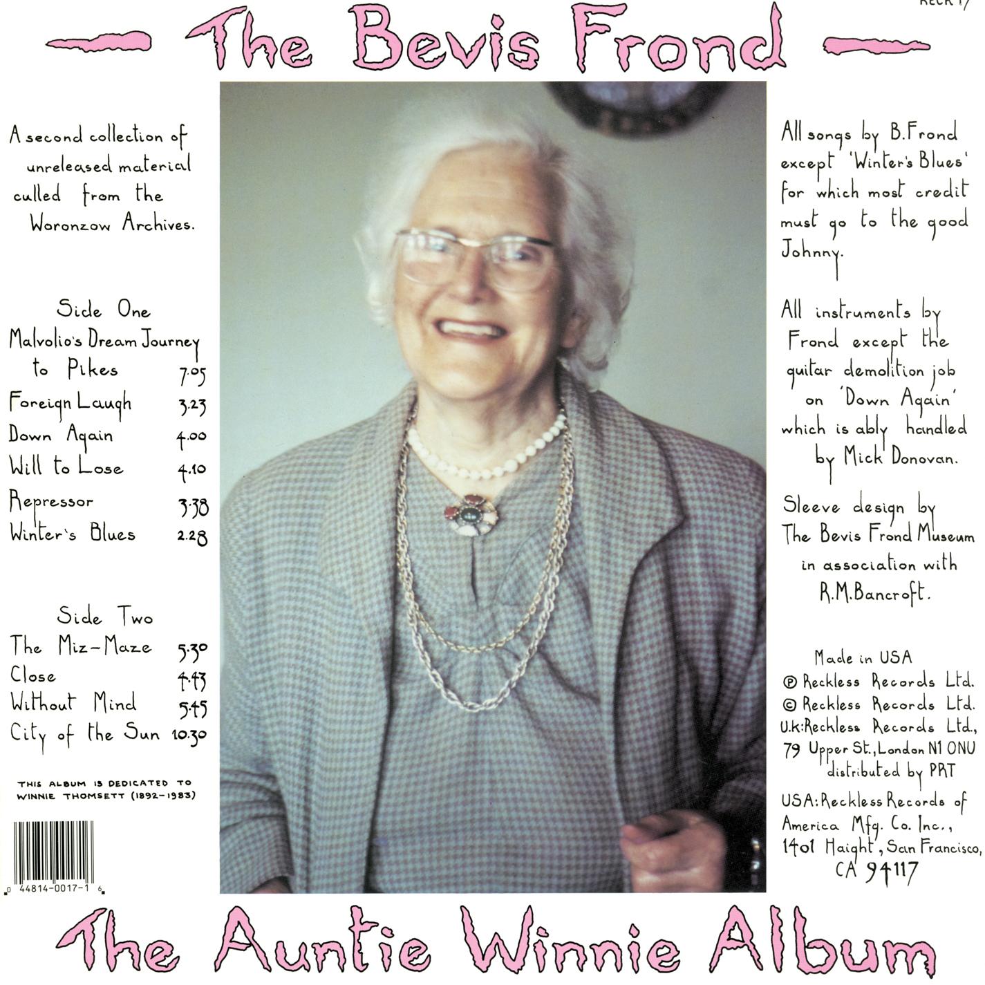 Power Pop Lovers The Bevis Frond The Auntie Winnie Album