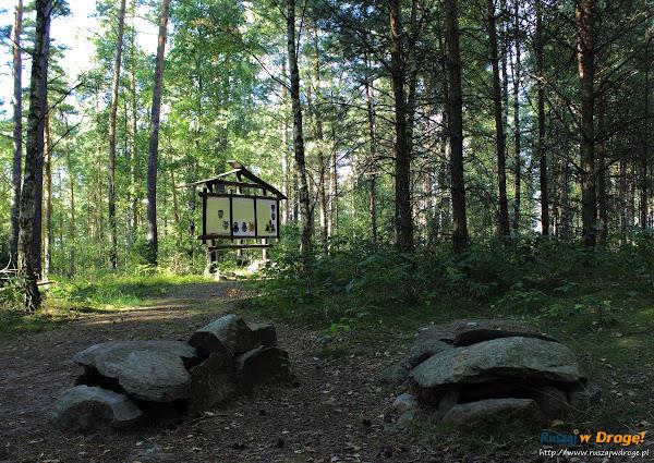 Groby skrzynkowe w Leśnie