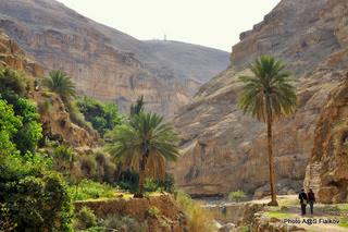 Вади Кельт. Экскурсия Путешествие вдоль Мертвого Моря. Гид в Израиле Светлана Фиалкова.