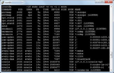 Averiguar qué aplicación está usando un puerto de comunicaciones en Linux