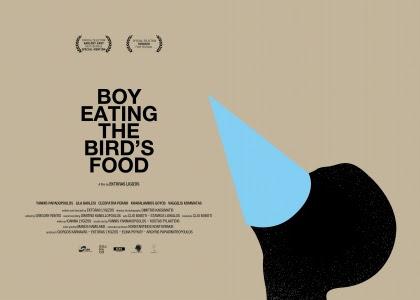 Το Αγόρι Τρώει το Φαγητό του Πουλιού Wallpaper