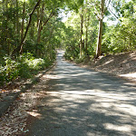 Road down to the end of Lookout Road in Blackbutt Reserve (399904)
