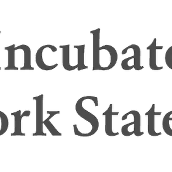 Business Incubator Association of NYS image